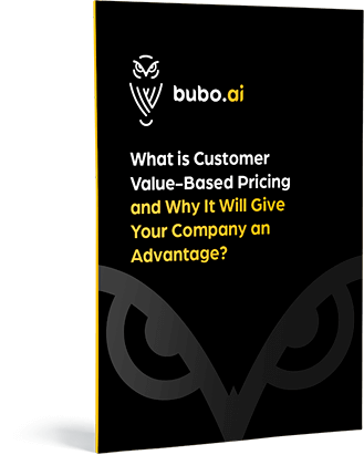Bubo.AI price optimisation experts company logo owl with eBook title what is customer value based pricing and why it will give your company an advantage