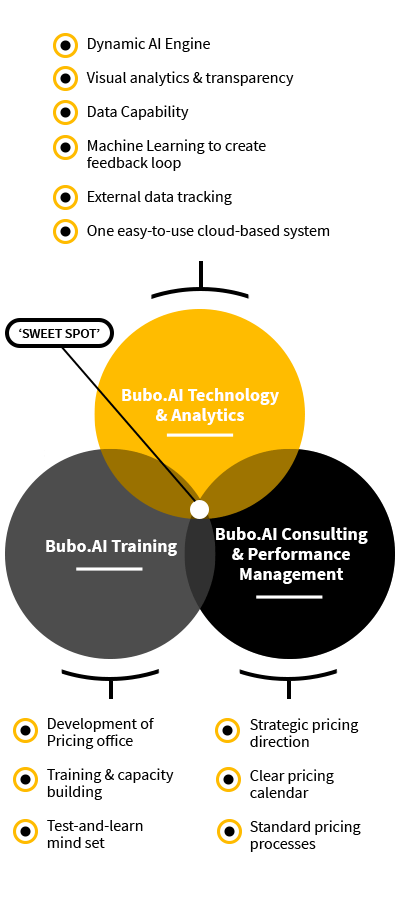 Bubo.AI venn diagram showing how Bubo.AI brings technology training and consulting together to create competitive pricing strategy